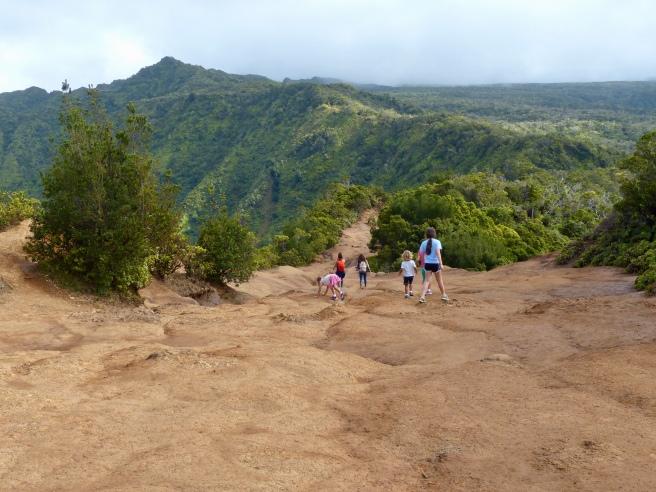 Top of Pihea Trail