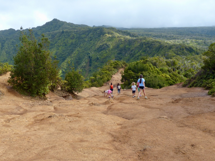 Top of Pihea Trail