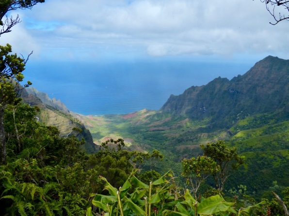 Kalalau Valley from Pu'u o Kila Lookout