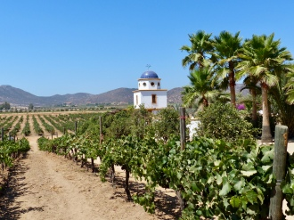 Adobe Guadalupe winery, one of over seventy wineries in the Guadalupe Valley two hours south of the border.